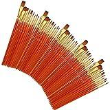JYCQ 50 Ensembles de stylos Aquarelle, tiges Rouges Transparentes, des brosses de Coloration des Cheveux en Nylon à Deux Couleurs, Les pinceaux de Peinture