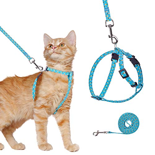 Sedaopetuk -  Katzengeschirr und