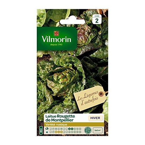 Vilmorin - Sachet graines Laitue Rougette de Montpellier