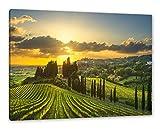 Pixxprint Malerische Weinberge in der Toskana als