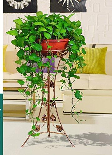 William 337 Stand de fleurs en fer forgé Stand de fleurs Stand de plantes en monocouche (Couleur : A)