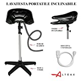 Altéax Lave-tête de coiffeur portable, avec douchette et tuyau d'évacuation inclus, hauteur et inclinaison réglables