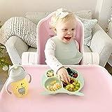 Bebamour Baby Toddler Owl Cub Placa de succión, placa de alimentación Stay Put, placa dividida para bebés Placa de succión linda para niños pequeños Placa de plato para bebé sin BPA (Rosa)