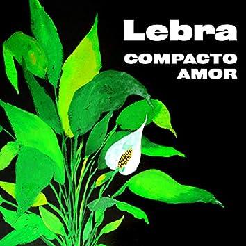 Compacto Amor