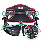 Teufelberger treeMOTION Harness for Arborists – Belt-and-Sit Saddle with Rear Tie-in Attachment (One-Size, Black)
