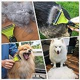 Zoom IMG-1 pecute pettini a rastrello cani