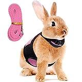 Guinzaglio a Imbracatura per Conigli Regolabile Imbracatura Morbida per Conigli Imbracatura per Coniglietti in Rete Gilet per Criceti con Guinzaglio Elastico per Piccoli Animali (Rosa)