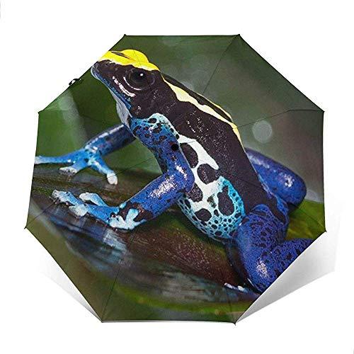 Blauer und gelber Frosch-Gedruckter winddichter Reise-Regenschirm - winddichtes, verstärktes Überdachung