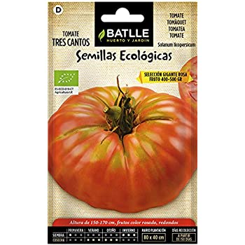 Semillas Ecológicas Hortícolas - Tomate tres cantos gigante rosa ...