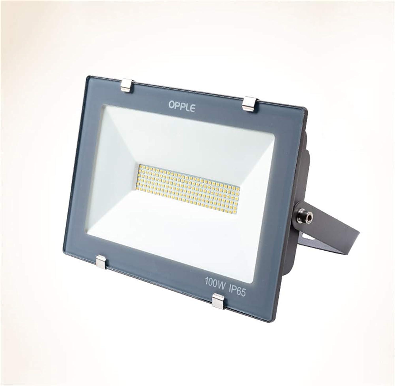 Strahler Mit,Outdoor-Platz-Garten-Scheinwerfer High Power Factory-Projektions-Licht (Farbe   Weies Licht, gre   100W)