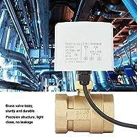 "【𝐁𝐥𝐚𝐜𝐤 𝐅𝐫𝐢𝐝𝐚𝒚 𝐒𝐚𝐥𝐞】Simlug ボールバルブAC220V DN40 1-1/2""2方向3線式真鍮電動電動ボールバルブ"