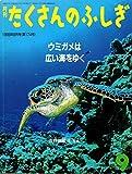 月刊たくさんのふしぎ 1999年09月号 ウミガメは広い海をゆく
