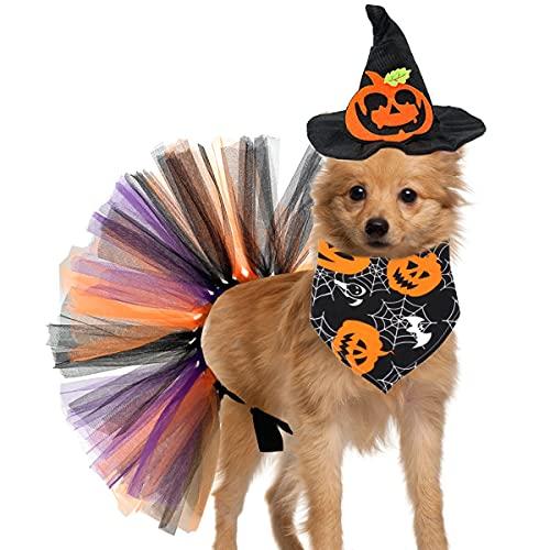 Vehomy Disfraz de Halloween para perro – Sombrero de bruja de calabaza para perro, Halloween, pañuelo triángulo con patrones de calabaza de Halloween, falda tutú para mascotas, disfraz de Halloween para gatos pequeños y medianos, 3 piezas
