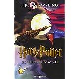 Harry Potter 1 e la pietra filosofale (Harry Potter Italian)