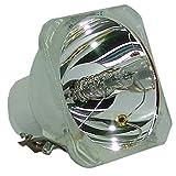 UHP 132-120W 1.0 E19 フィリップス プロジェクション オリジナル プロジェクター電球