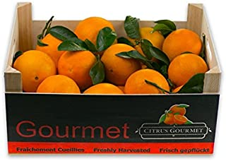 Naranjas Gourmet de Valencia Zumo 20 Kg por 21,49