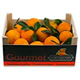 Caja de Naranjas Valencianas de Zumo 12 Kgs