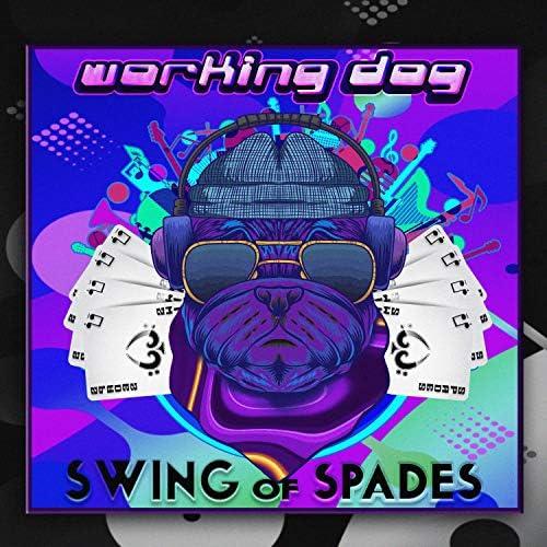 Swing of Spades