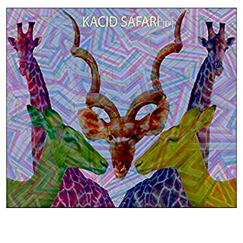 Kacid Safari