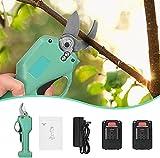 TOPQSC - Tijeras de podar eléctrica, cortacésped de árboles frutales de jardín, recargables, inalámbricas, 25 mm (verde) con 2 baterías de litio de 21 V de repuesto