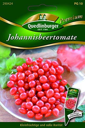 Johannisbeer-Tomate Quedlinburger Saatgut Samen 290424