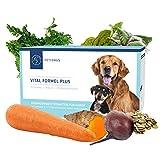 PetFokus Vital Formel Plus - Vitamine, Cholin und Pflanzenstoffe für Ihren Hund