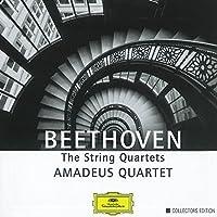 String Quartets [7 CD Box Set] by Amadeus Quartet (2000-10-10)