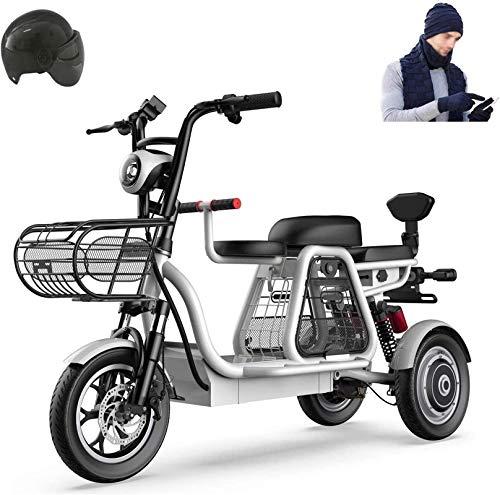 Bicicleta eléctrica de nieve, 500W 3 Rueda de bicicleta eléctrica de 48V for adultos 8AH Montaña Scooter eléctrico 12 En bicicleta eléctrica de absorción de choque múltiple con la cesta del almacenaje