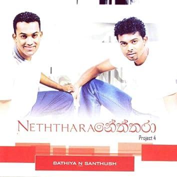 Neththara Project 4