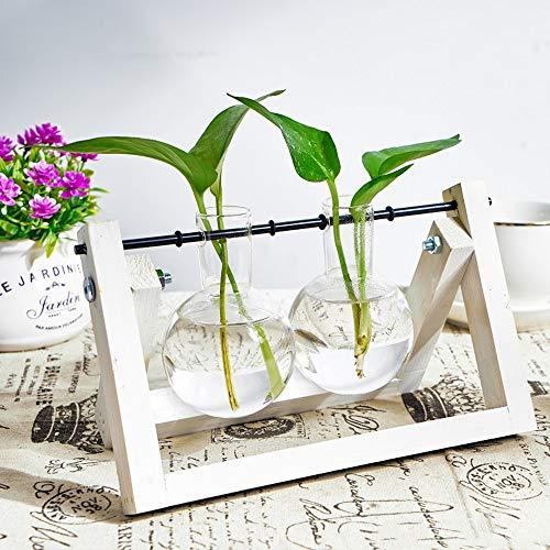 KnikGlass Hydroponische Vase Deko Holz Halter mit Hydroponik Glasvase Hängevase Blumenvase Tischvase Dekovase für Hydrokultur Pflanzen, Zuhause oder Büro Dekoration (Weiß, 2 Vasen)