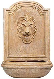 Best lion head wall fountain Reviews