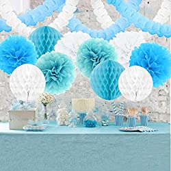 Baby Shower Decoration Ideas. Blue and White Pom Poms.