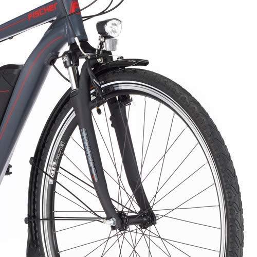 Trekking E-Bike FISCHER Herren  ETH 1806 2019 Bild 3*