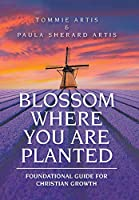 Blossom Where You Are Planted: Foundational Guide for Christian Growth