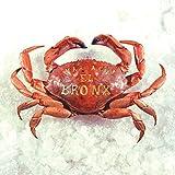 Mariachi El Bronx (10 Year Anniversary Edition) [LP][Transparent Smoke]