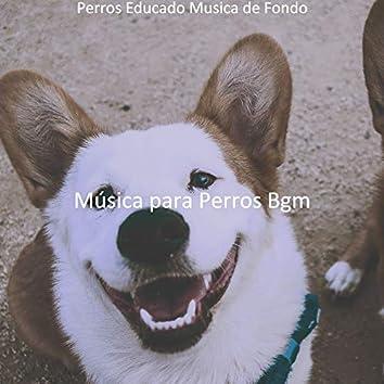 Perros Educado Musica de Fondo