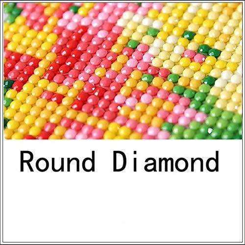 Couture Plein Diamant Broderie Animal Diy Diamant Peinture Poissons Sauter Carré 3d Forage Diamant Icône Coller Plein Artisanat-Diamant Rond-65x50 cm