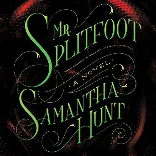 Mr. Splitfoot cover art