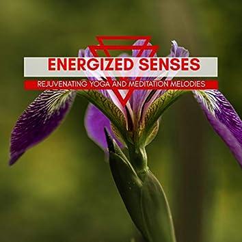 Energized Senses - Rejuvenating Yoga And Meditation Melodies