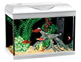 Wave A2001615 Acquario Riviera 40 LED Coldwater