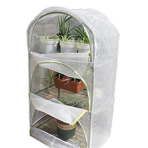 HWLL Casa Cálida de Invernadero Portátil, para El Cultivo de Hortalizas, Flores, Plántulas, Plantas en Macetas, para Balcón de Patio Trasero