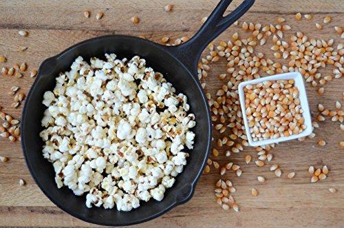 Product Image 4: Anthony's Organic Yellow Popcorn Kernels, 3 lb, UnPopped, Gluten Free, Non GMO