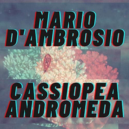 Mario D'ambrosio