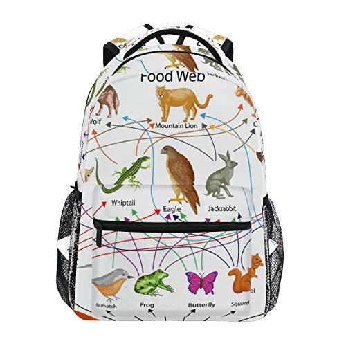 CPYang - Mochilas de alimentos biológicos para animales, para la universidad, para la escuela, para llevar al hombro, para viajes, senderismo, acampada