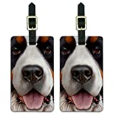 Bernese Mountain Dog Face Closeup Luggage ID Tags Carry-On Cards - Set of 2