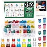 Keadic 252Pcs Full Range Car Blade Fuses and Jcase Fuse Assortment Kit, Automotive Assorted Fuses with a Puller Tool for Ford Chevy/GM Nissan and Toyota Pickup Trucks Cars and SUVs - 5A 7.5A 10A 15A 2