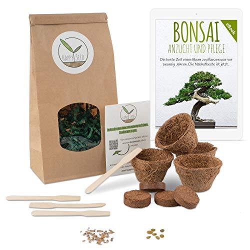 Bonsai Starter Kit Anzuchtset inkl. GRATIS eBook - Pflanzset aus Kokostöpfen, Samen & Erde - nachhaltige Geschenkidee für Pflanzenfreunde (Afrikanischer Blauregen + Australische Kiefer)
