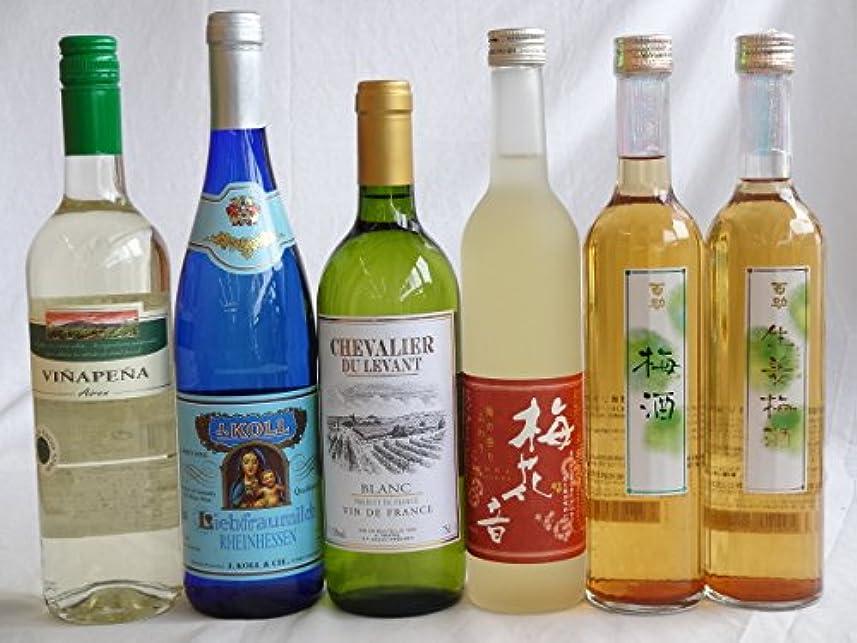 ラケット彼ら虚弱ファミリーグッドチョイス6本 高品質3ヵ国白ワイン(ドイツ フランス チリ750ml)3本セットと変り種リキュール500ml(牛乳 梅酒 生姜梅)飲み比べ6本セット