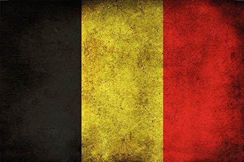 FS land vlag België nationale vlag metalen bord gebogen plaat 20 x 30 cm