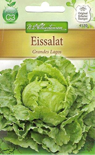 Chrestensen Eissalat 'Grandes Lagos'